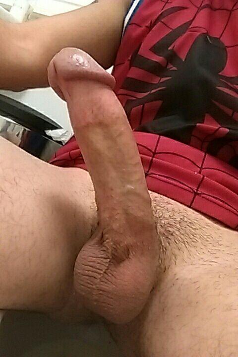 CockStudU3